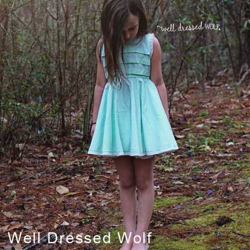 Well Dressed Wolf 1